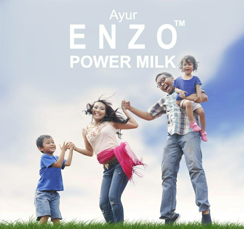 AYUR ENZO Power Milk Assorted [Pack of 12]
